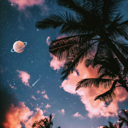 sky heaven palmtrees galaxy universe stars moon planet silhouette clouds night glitter aesthetic aestheticedit aestheticwallpaper aestheticsky aesthetictumblr tumblr fantasy backgrounds imagineabrighterreality gacha vaporwave remixit freetoedit