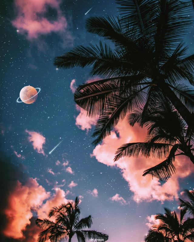 •𝐈 𝐰𝐚𝐧𝐭 𝐭𝐨 𝐭𝐫𝐚𝐯𝐞𝐥 𝐢𝐧 𝐭𝐡𝐞 𝐬𝐭𝐚𝐫𝐬 𝐚𝐧𝐝 𝐭𝐡𝐢𝐬 𝐦𝐢𝐬𝐞𝐫𝐚𝐛𝐥𝐞 𝐛𝐨𝐝𝐲 𝐢𝐬 𝐡𝐨𝐥𝐝𝐢𝐧𝐠 𝐦𝐞 𝐛𝐚𝐜𝐤•🌠☁️🌖🌴 - Willem Dafoe as Vicent Van Gogh  #sky #heaven #palmtrees #galaxy #universe #stars #moon #planet #silhouette #clouds #night #glitter #aesthetic #aestheticedit #aestheticwallpaper #aestheticsky #aesthetictumblr #tumblr #fantasy #backgrounds #imagineabrighterreality #gacha #vaporwave #remixit @picsart
