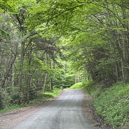 freetoedit road photo travelyourroad