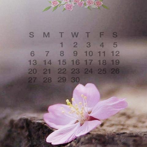 #calendar2021,#june,#srcjunecalendar2021,#junecalendar2021,#freetoedit