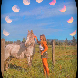 annaseavey annaseaveyedit aesthetic aestheticedit aesthetics aesthetictumblr aestheticsky moon filter heypicsart sticker golden goldenhour makeawesome horse freetoedit