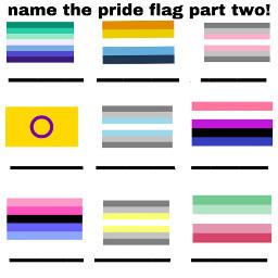prideflag parttwo nametheflag icebreackers pridemonth2021 freetoedit