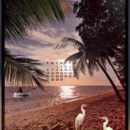 sea beach palmtrees sky sunset boat birds freetoedit srcjunecalendar2021 junecalendar2021