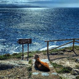 asturias sea hdr photography nature