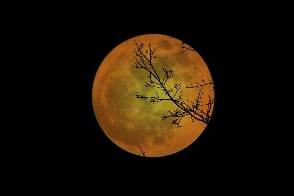 #freetoedit #moon