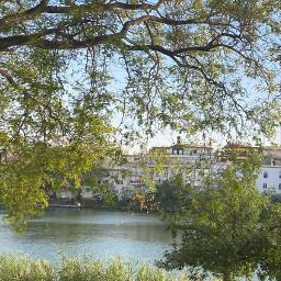green park river