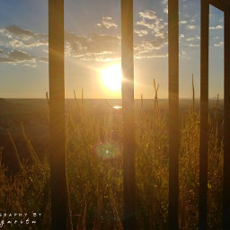 sun photographybymargarita brillaperla pcsunnyweather sunnyweather