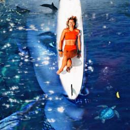 ninadobrev thevampirediaries katherinepierce water dolphins turtle freetoedit ircsurfsup surfsup