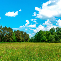 freetoedit meadow landscape myphotography photography nature