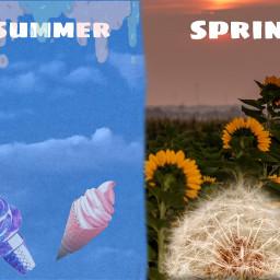 summer spring freetoedit