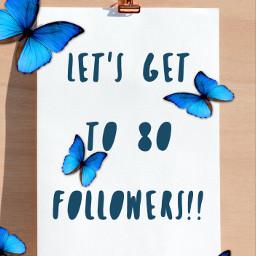 80followers follow freetoedit
