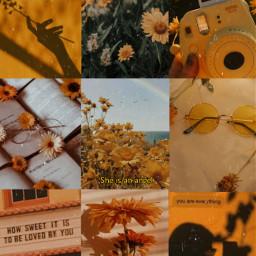 yellow aesthetic collage collagebackgroround madewithpicsart makeawesome heypicsart yellowbackground aestheticbackground yellowaesthetic freetoedit