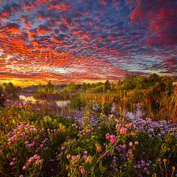 freetoedit remixit nature landscapephotography beauty pretty landscape beautiful follow fanart peace happytaeminday popular popularpage flowers wildflowers rural