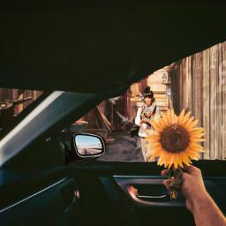 mirpar02 instagram instagramchallenge woman car flower notfreetoedit