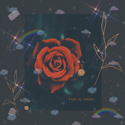 freetoedit rose flower e stopmakingmedohashtags picsart