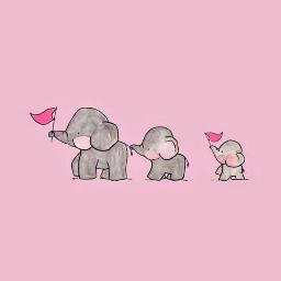 elefantes elephants rosa pink grey gris bebe baby dad mum papa mama wallpaper aesthetic 4k freetoedit