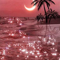 verano playa rosa brillante brillos palmeras luna atardecer aesthetic peachy beach summer background pink orange sparkly palmtrees moon sunset tropical myedit gaby298 remixed freetoedit