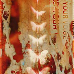 freetoedit random collage abstract dream lost grunge butterfly skull mansilhouette findyourvoice remixit grungebackground background