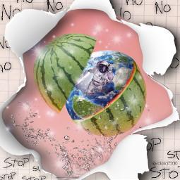 ecfunfruits funfruits freetoedit