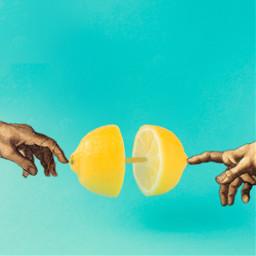 lemon manandgod ecfunfruits funfruits freetoedit