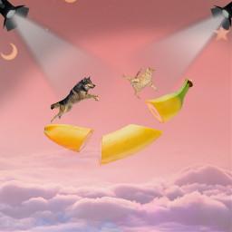picsart picsartchallenge freetoedit ecfunfruits funfruits