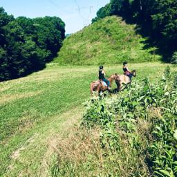 horses fun woods trails friends summer