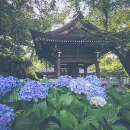 長尾山妙楽寺