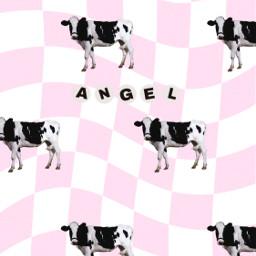 pink pinkaesthetic pretty girly barbie cute y2k angelcore softgirl softpink babypink cow dojacat aesthetic cowprint 90s pattern checkerboard angel angelic beadletters homescreen phonewallpaper lockscreen wallpaper freetoedit