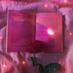 Libro Rosa Flor Cielo Rosa Brillos Brillante Luna Soft Book Glitter Moon Flor Rose Flower Sky Sparkles Glitterlovers Pink Blumen Aesthetic Pinkaesthetic Moon Luna Gaby298