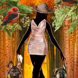 woman dogs birds pets ircdancersilhouette dancersilhouette freetoedit