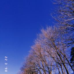 photography huphoto freetoedit huji