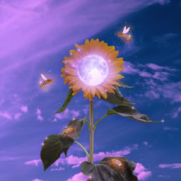 freetoedit sky heaven sunflower bee flower moon glitter lights aesthetic pink pinkaesthetic purpleaesthetic purple surreal hand nature aestheticwallpaper wallpaper background aestheticedit indie galaxy gacha