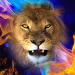 holyspiritfire lionofjudah stomp fire spirit holyspirit move stand impact artjungle fcinyourownway inyourownway freetoedit