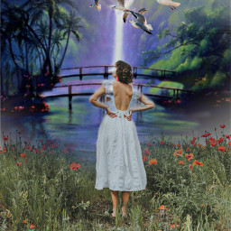 waterfalls pigeon girl forest freetoedit
