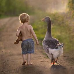 desafio challenge child menino boy littleboy duck vidasimples simplelife campo freetoedit srcsearchingfor searchingfor
