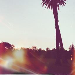 freetoedit polaroid oldphoto scenery fcinyourownway inyourownway