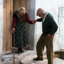 desafio challenge busca casal idosos casaldeidosos amorverdadeiro truelove carinho cuidado comovente freetoedit srcsearchingfor searchingfor