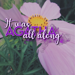 freetoedit agatha purple flower fcinyourownway inyourownway