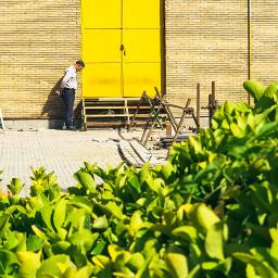door yellow walk time