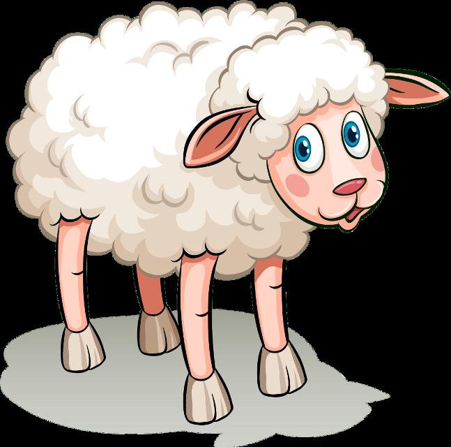 #عبارات  #عيد #عيد_سعيد #Lamb #عيدكم_مبارك #عيد_الاضحى #عيد_مبارك #خروف_العيد  #خروف  #عيدسعيد_عيدالفطر #عيد_اضحى_مبارك #عيدمبارك #sheep  #Eid #eidaladha  #animals  #eidmubarak     #arabic    #تيكتوك   #حيوانات    #arabic_font   #تهاني_العيد  #samir   #ramadan   #tattoo