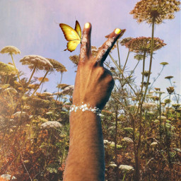 freetoedit peace challenge edit flowers butterfly henna bracelet sky ircpeacesign peacesign