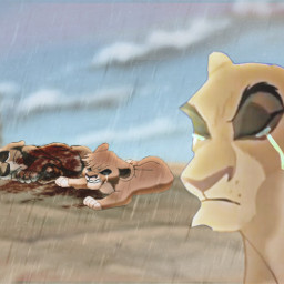 freetoedit remixit disney animash thelionking kopa vitani lions sad memory remember flashback everglow bestfriends goodbye gore rain lluvia storm tormenta sadedit tristeza edit