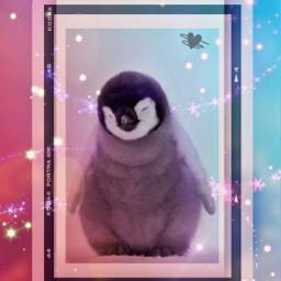 penguin cute kawaii summer colorful art edit likesforlike follow freetoedit