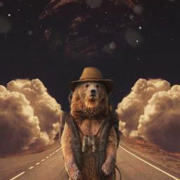 stars estrelas desafio challenge urso bear horizonte clouds nuvens road estrada moon lua freetoedit srcgentlebluestars gentlebluestars
