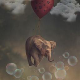 desafio challenge bluestars estrelasazuis elefante elephant balloon balao voando flying sky ceu nuvens clouds bolhasdesabão freetoedit srcgentlebluestars gentlebluestars
