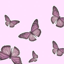 pink pinkaesthetic aesthetic butterfly butterflies butterfliesaesthetic cute pretty barbie soft softpink lightpink angel angelcore girly y2k 2000s 90s hotpink outline phone wallpaper background homescreen lockscreen freetoedit