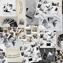 freetoedit collage wallpaper polaroid unique madebyme picstart