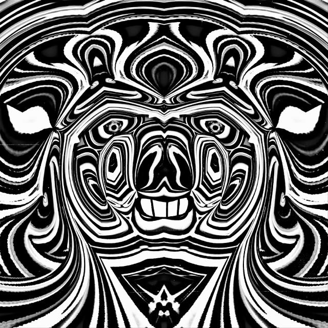 #zebra #abstract #abstractartist