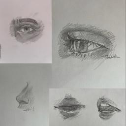 art drawing sketch pencil pencilsketch mechanicalpencil pencildrawing eye eyedrawing nose nosedrawing lips lipdrawing lipsketch realism realistic semirealism realisticart