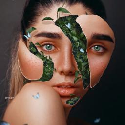nature green freetoedit
